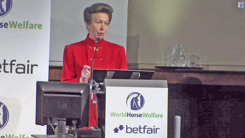 Księżniczka Anna podczas wystąpienia w 2013 r.