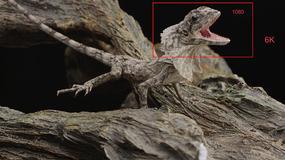 Tworzony jest kolejny standard obrazu filmowego - 6K
