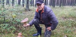 Sukces grzybiarza z Małopolski. Pan Jerzy znalazł olbrzymiego prawdziwka!