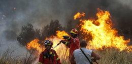 Dramat setek dzieci. Pożar wybuchł w pobliżu obozu letniego