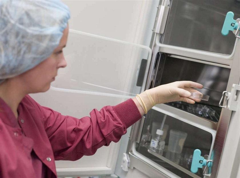 in vitro, zapłodnienie