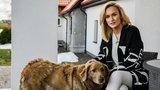 """""""Rolnik szuka żony"""". 28-letnia producentka pieczarek zachwyciła internautów urodą"""
