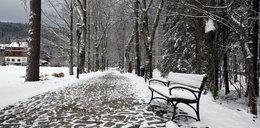 Powrót zimy. Podhale pod śniegiem!