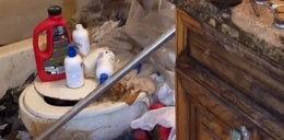 W mieszkaniu zepsuła się ubikacja. To, co lokatorka zostawiła w łazience, zbierali łopatą