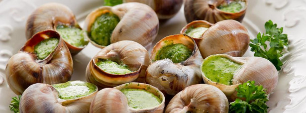 """Ślimak to ryba Jak łatwo się domyślić za uczynieniem ze ślimaka ryby lobbowała Francja. Dlaczego? Hodowle ryb były dotowane z funduszy unijnych, natomiast ślimaków już nie. Kiedy jednak ślimak """"stał się"""" rybą - problem zniknął."""