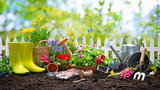 Kwiecień w ogrodzie - kalendarz ogrodnika. O czym należy pamiętać?