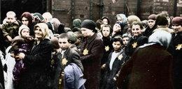 Poruszające zdjęcia z Auschwitz. Po raz pierwszy w kolorze
