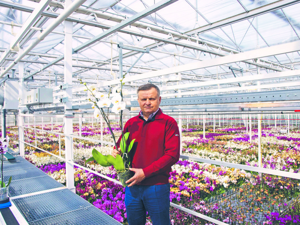Firma Jarosława Ptaszka wyspecjalizowała się w produkcji kwiatów pod koniec lat 90. Dziś uprawy róż i storczyków zajmują po 6 hektarów, zaś anturiów – 3 ha.