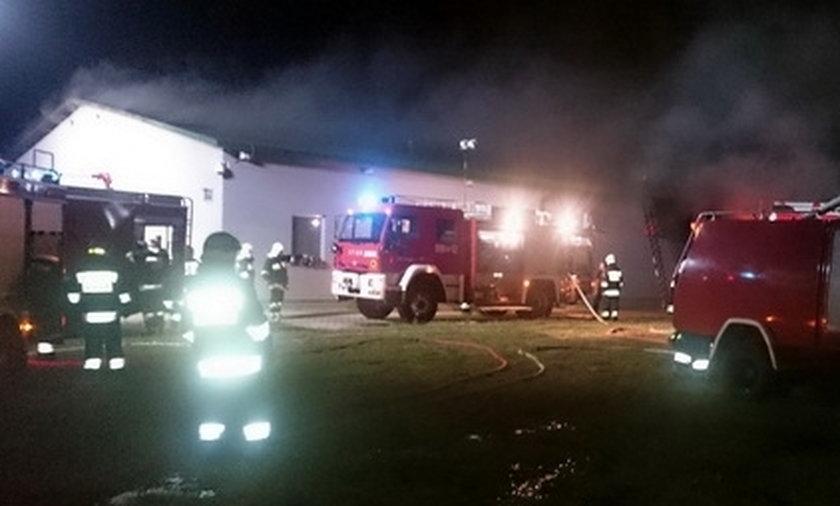 Wielki pożar na fermie norek