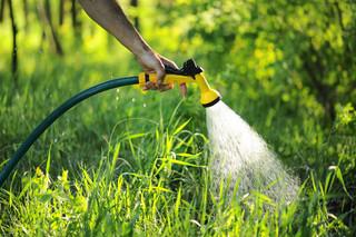 Czy kara za niedozwolone podlanie ogródka jest zgodna z prawem?