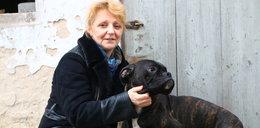 Pies bohater. Uratował rodzinę od śmierci!