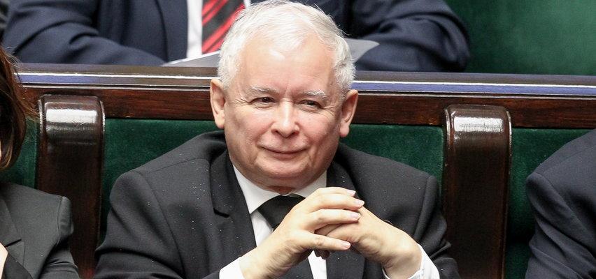 """PiS zyskuje na """"Polskim Ładzie"""". Jaki wynik Koalicji Obywatelskiej? Nowy sondaż"""
