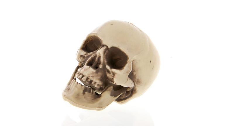 7462e067f90f Mi járhatott a fejében? Egy szurkoló kiásta nagyapja koponyáját ...