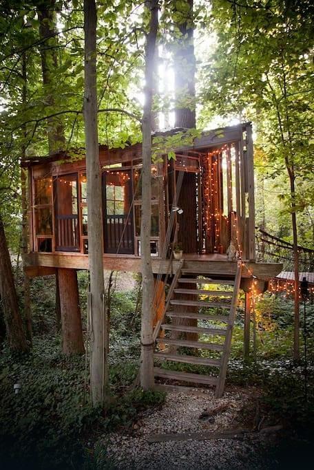Domek na drzewie ulokowany jesr w stanie Georgia