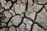 Nezapamćena suša je naterala stanovništvo da iz sela beži u gradove