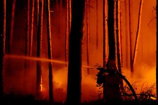 Niemcy: Wielki pożar lasu pod Berlinem. Setki ewakuowanych