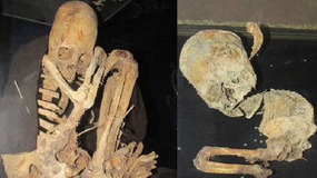 W Boliwii odkryto szkielety z nienaturalnie wydłużonymi czaszkami