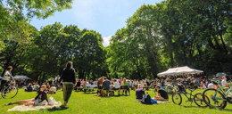 Lato w parku Kasprowicza