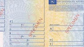 Rejestracje samochodów we wrześniu 2010 r.