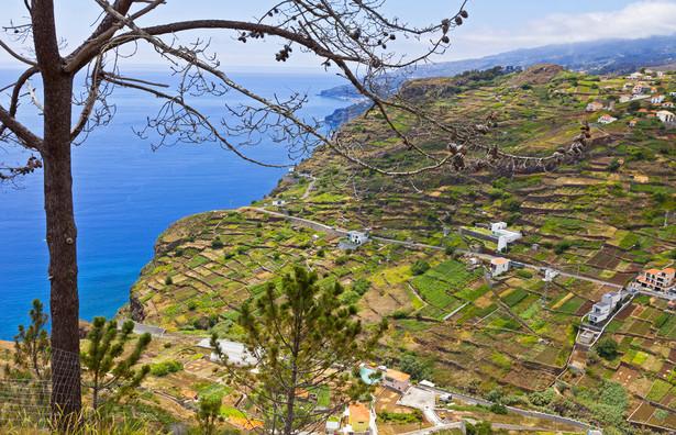 Wyspa jest częścią archipelagu leżącego 500 km od wybrzeża Afryki i 1000 km od Europy.