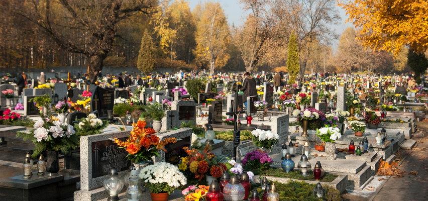 Cmentarze znów zamknięte 1 listopada? Minister Niedzielski ujawnia plany rządu