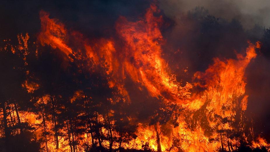 Pożary w prowincji Antalya w Turcji