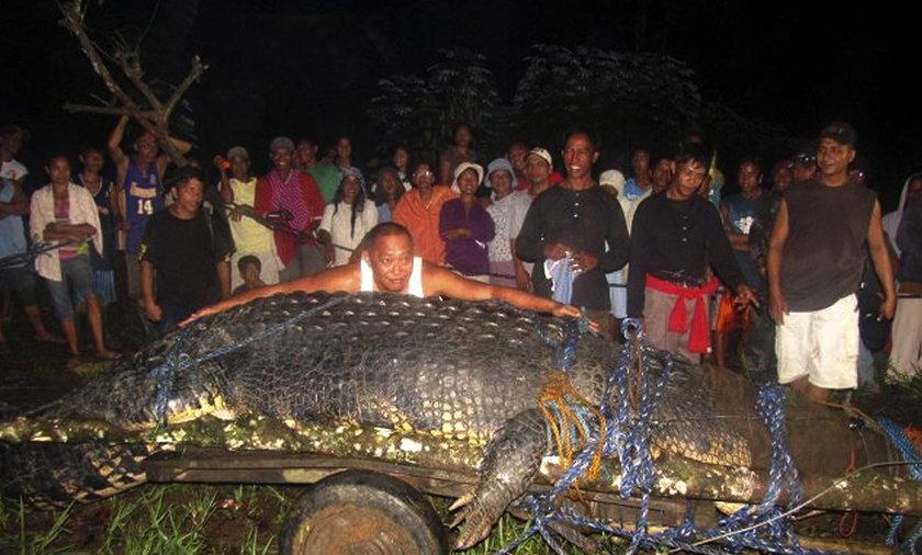 Krokodyl rekordzista