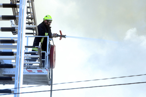 Objavili fotografiju neobičnog plena: Prijedorski vatrogasci UKLONILI SLEPOG MIŠA iz stana u centru grada (FOTO)