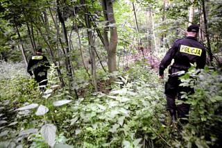 Przez całą noc szukali w lesie 79-latka. Odnalazł się rano