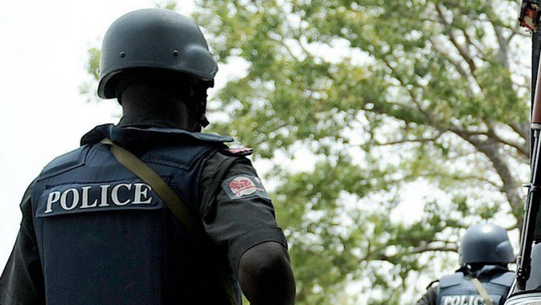 Police arrest student who allegedly kidnapped own sister in Taraba. (Premium Times)