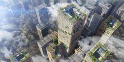 W Tokio powstaje 70-piętrowy wieżowiec z drewna