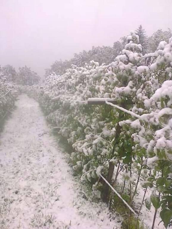 Sneg u Ivanjici danas