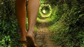 [QUIZ] Czy idziesz dobrą życiową ścieżką?