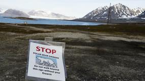 Rosyjscy polarnicy uwięzieni przez niedźwiedzie na wyspie Wajgacz