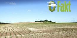 Susze w Polsce będą naszą codziennością, a my zużywamy więcej wody niż jej mamy!