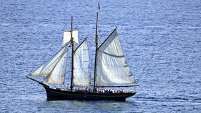 Jachtsmen Roku 2008