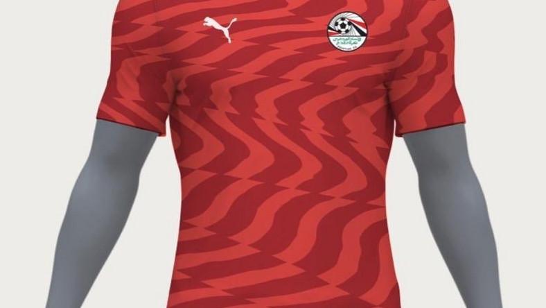 10bdf555c94 AFCON 2019 hosts Egypt unveil new Puma jersey - Pulse Nigeria