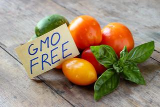 """""""Wyprodukowano bez stosowania GMO"""" lub 'Bez GMO'. Kiedy stosować te znaki graficzne"""