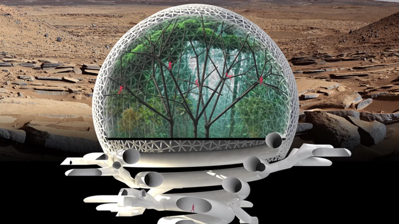 Las sekwoi - zwycięski projekt marsjańskiego miasta