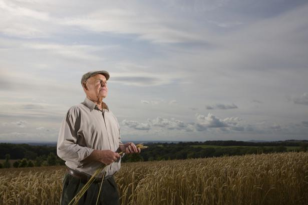W 2015 r. wnioski o przyznanie dopłat bezpośrednich złożyło 1 mln 355 tys. rolników.