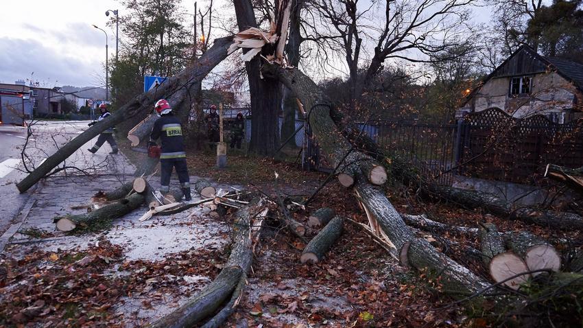 Znalezione obrazy dla zapytania anomalie pogodowe polska