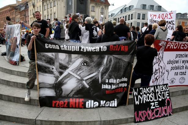 Manifestacja przeciwko wywozowi polskich koni na rzeź do Japonii, PAP/Tomasz Gzell