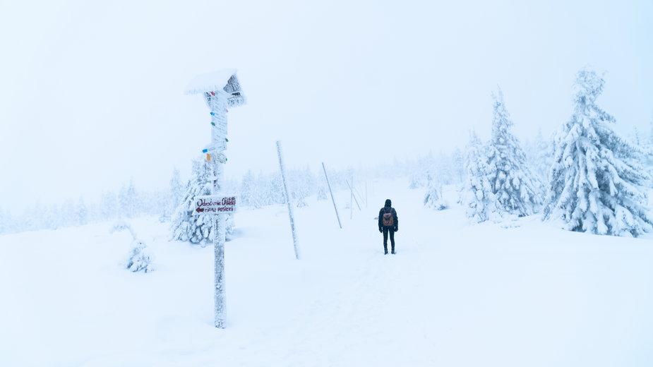 Karkonosze zimą