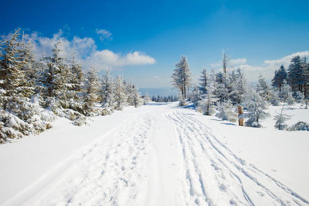 Szczyrk Kompleks w Szczyrku i okolicach to nadal numer jeden w Polsce biorąc pod uwagę łączną długość oferowanych tras. Narciarze i fani snowboardu mają tu do dyspozycji łącznie prawie 37 kilometrów różnych odcinków - zdecydowana większość, bo ponad 22 km, to trasy nie wymagające zaawansowanych umiejętności. Dla średnio zaawansowanych od grudnia do marca czeka prawie 10 km tras. Dla potrafiących już sporo są 4 km. W sumie pracuje tu 11 wyciągów. Baza noclegowa bardzo rozbudowana (ośrodki wypoczynkowe, pensjonaty, domy gościnne, kwatery i apartamenty).