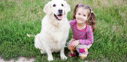 Twoje dziecko chce mieć psa? Koniecznie przeczytaj!