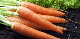 Lubisz to warzywo? Sprawdź, jakie korzyści daje spożywanie go