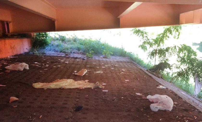 Strażnicy posprzątali na Pestce
