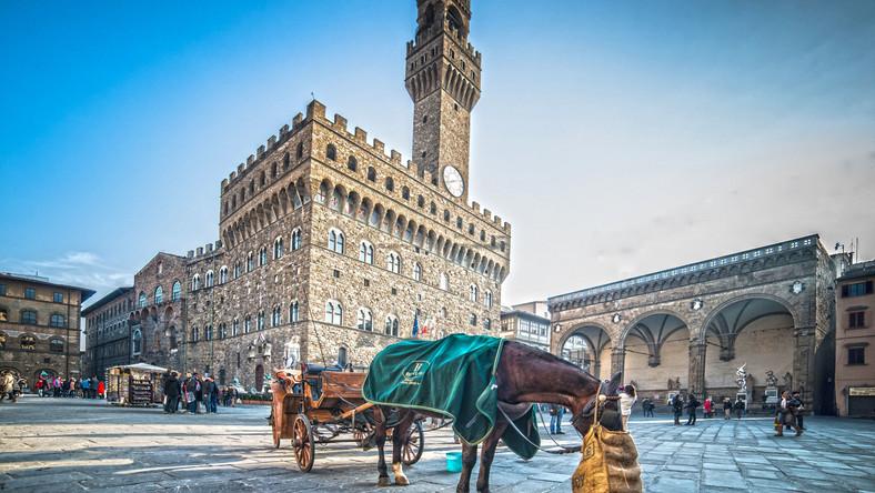 Florencja. Piazza della Signoria