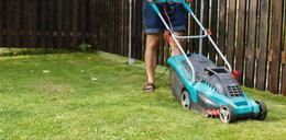 7 najlepszych urządzeń elektrycznych do ogrodu