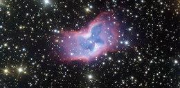 Zrobili niezwykłe zdjęcie! Kosmiczny motyl zadziwił wszystkich